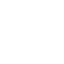 document search interface